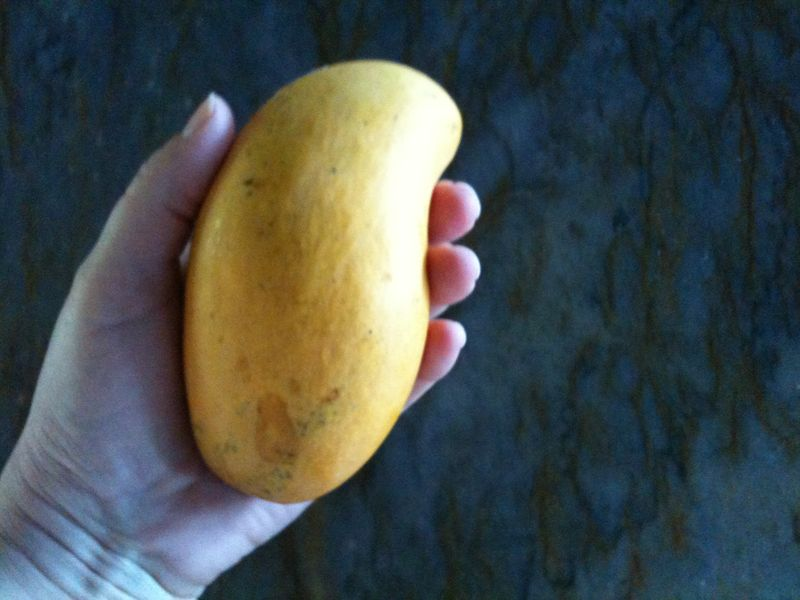 Mango in my hand