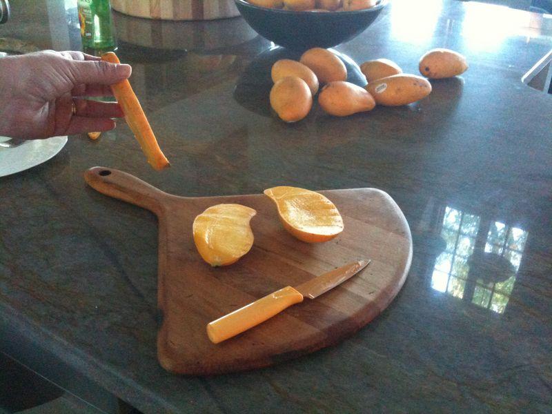 Mango pit