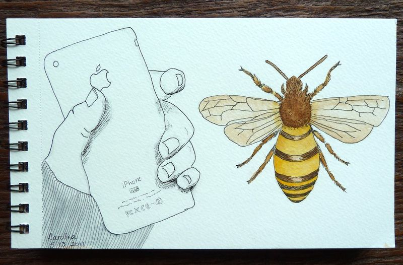Iphone and The Honey Bee