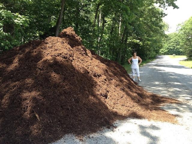 Me & my mulch