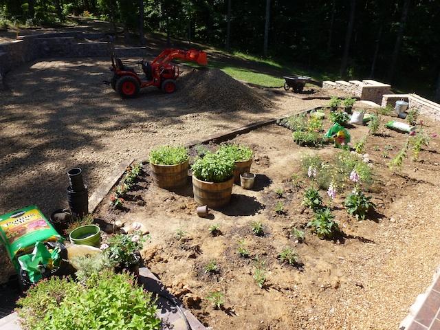 Beginning the garden