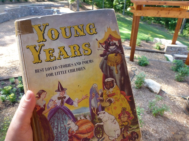 Young Years book cover
