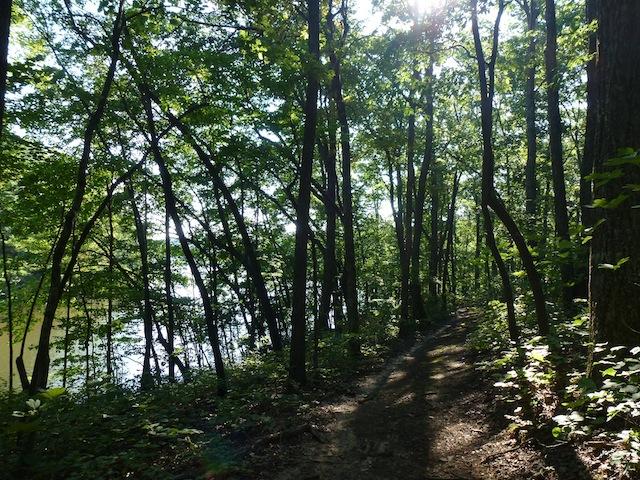 Trail 8:2012