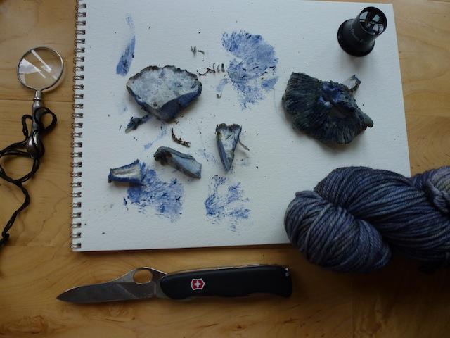 Blue mushroom con lana