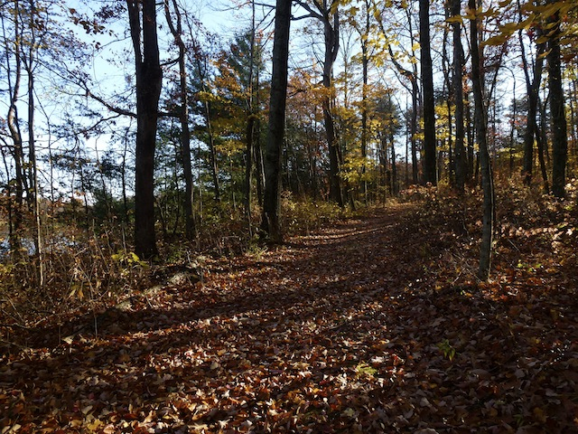Hike fall 2012